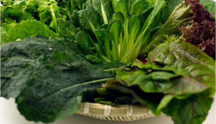 Nhóm xanh lá đại diện như rau cải, rau bí, rau ngót... -1