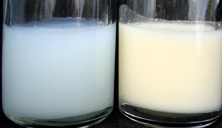 So sánh sữa đặc và loãng 2 dòng sữa mẹ -1